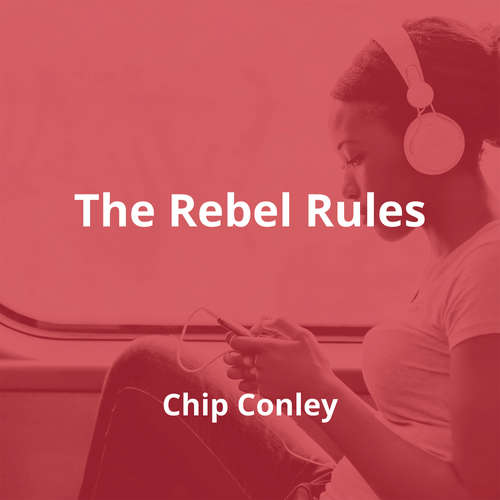 The Rebel Rules by Chip Conley - Summary